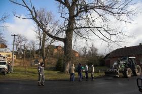 2009 Kácení stromu Květná_10