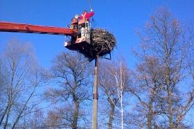 2016 - Čištění a úprava čapího hnízda na školní zahradě