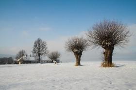Zima v Lukové_11